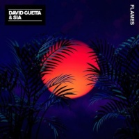 David GUETTA - Flames