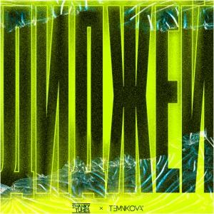 SWANKY TUNES - Диджей
