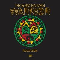 THK - Warrior (Amice rmx)