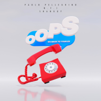 Paolo PELLEGRINO - Oops (Go Back To Your Ex)